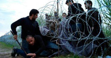 La Tragedia dei Balcani: tra minaccia pandemica e paura dello straniero barcolla anche l'UE*